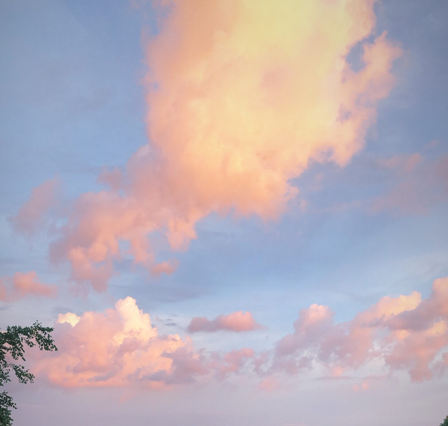 Blue sky with pink clouds