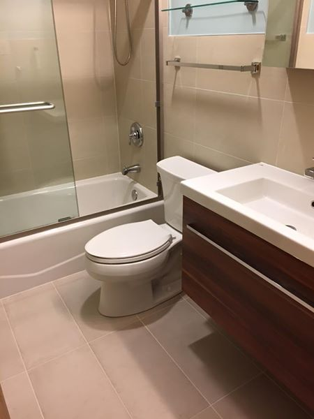 Chicago Hyde Park Bathroom Remodel – E. 55th St