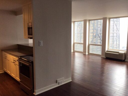 Chicago Downtown Condo Remodel – E. Chestnut Ave