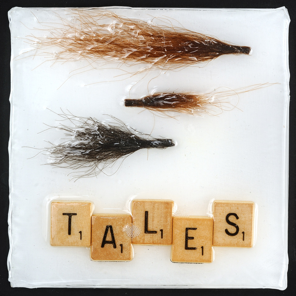 Tales, 5x5, Hair, scrabble pieces on wood under resin, $45