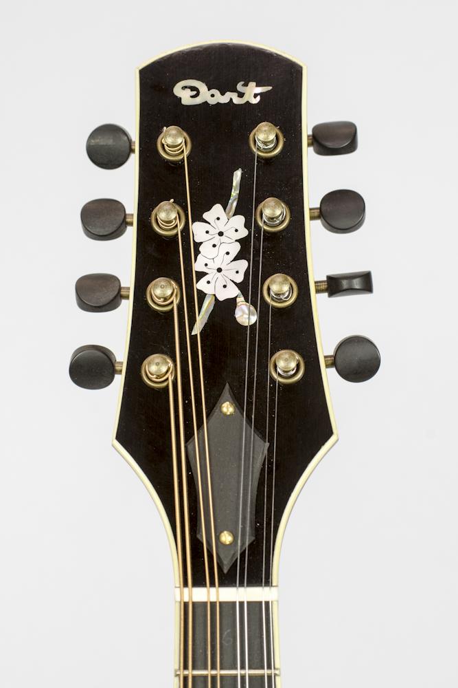 David Dart Cherry Blossom Inlay, from a Maple A5 Mandolin