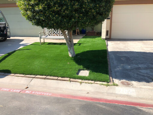 Bluegrass Supreme Turf installation in Campbell, Ca