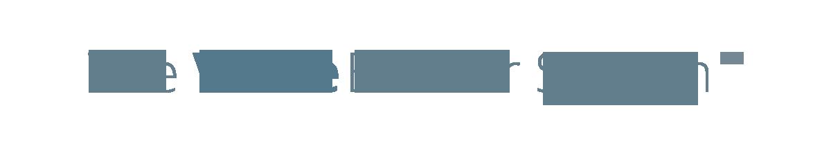 VBS logo