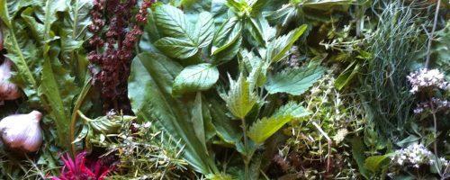 Herbal Vinegar