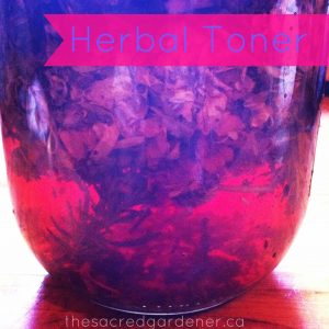 Witch Hazel Infusing with herbs. Check out the incredible colour!