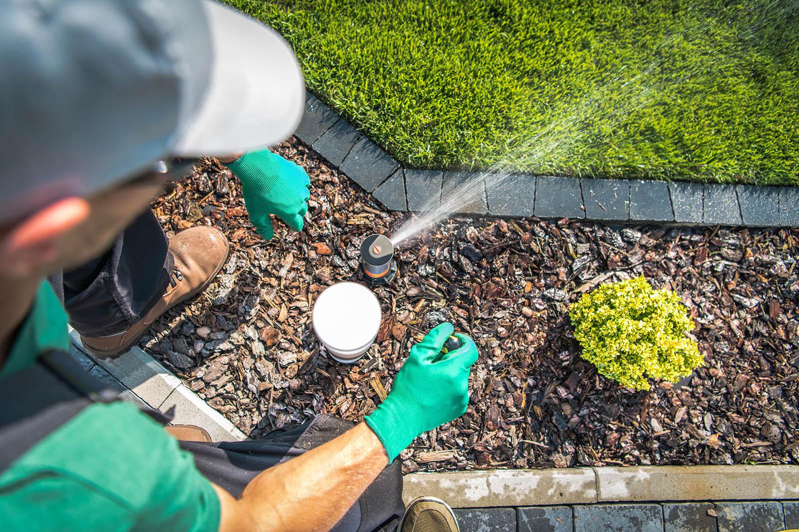 Adjusting Lawn Sprinkler by Professional Garden Irrigation Technician.