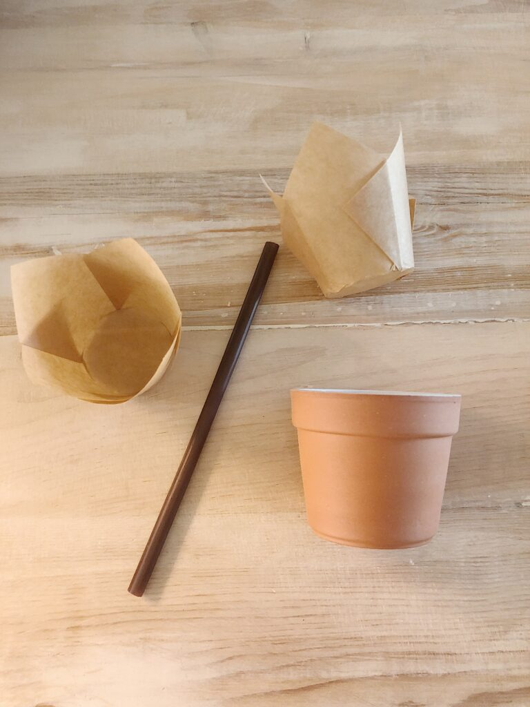 supplies for carrot muffins in terra cotta pots