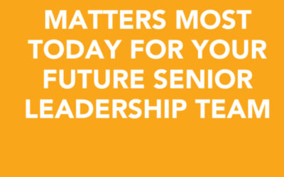 Here's what matters most today for your future senior leadership team | Karen Matsueda | Ctrl+Alt+Del w/ Lisa Duerre – Igniting Leaders in Tech