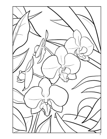 Orchid Relaxing Adult Coloring Book by Kayleel image 2