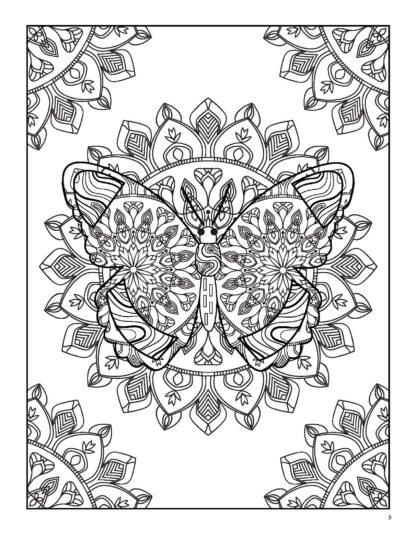 Relaxing Butterflies: Butterfly Mandala Coloring Book image 2