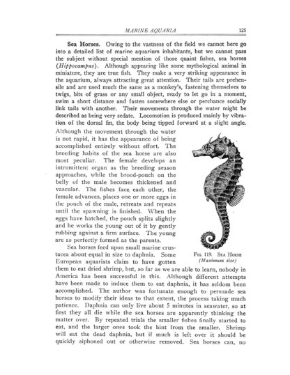 Goldfish Varieties and Tropical Aquarium Fishes: A Classic Illustrated Guide to Aquaria image 7
