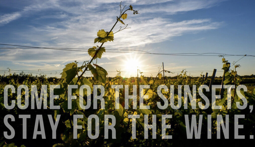 Our Story: Come for the sunsets, stay for the wine