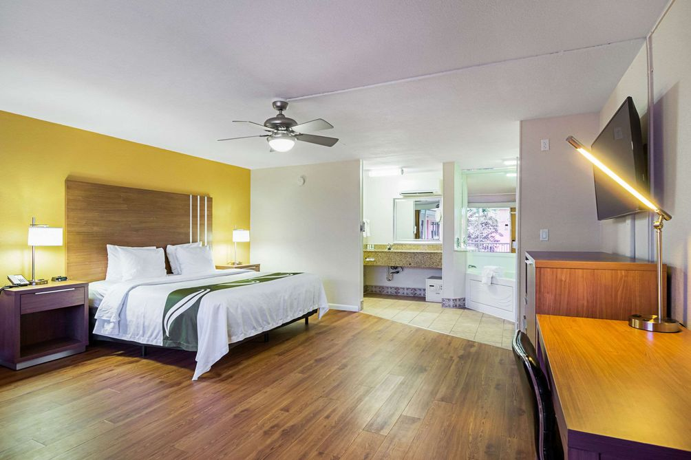 Beautifully appointed and oversized hotel room with king bed and hard wood floor
