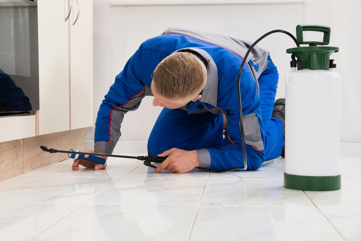 Pest Exterminator on ground spraying for insects
