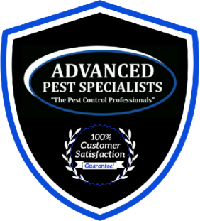 Advanced Pest Specialists