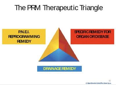 The PRM therapeutic triangle.