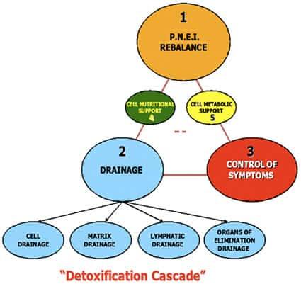 The Physiological Regulating Medicine