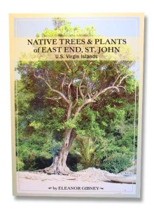 Native trees and plants of east end st. johnn