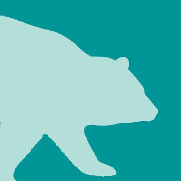 Bears at Yellow River Wildlife Sanctuary