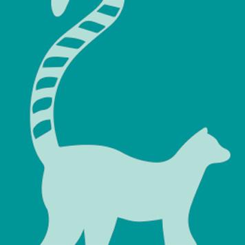 Ring-Tailed Lemurs at YRWS