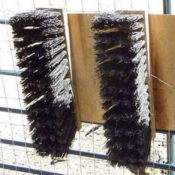 broom enrichment yellow river wildlife