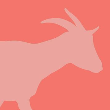pygmy goat yellow river wildlife sanctuary