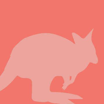 YRWS Bennett's Wallaby icon