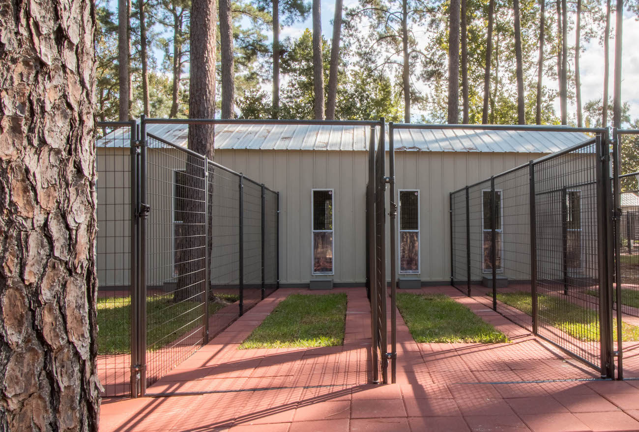 Luxury Dog Boarding Kennels with Private Grassed Backyards