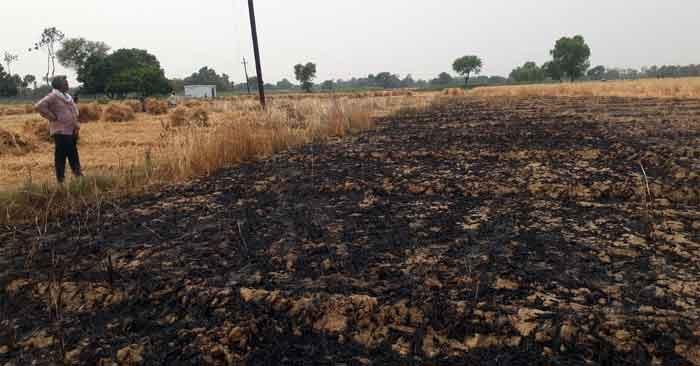 आग का कहर: दुधैला में झोपड़ी सहित खेत तो सुल्तानपुर में 5 बीघा गेंहू की फसल जलकर राख