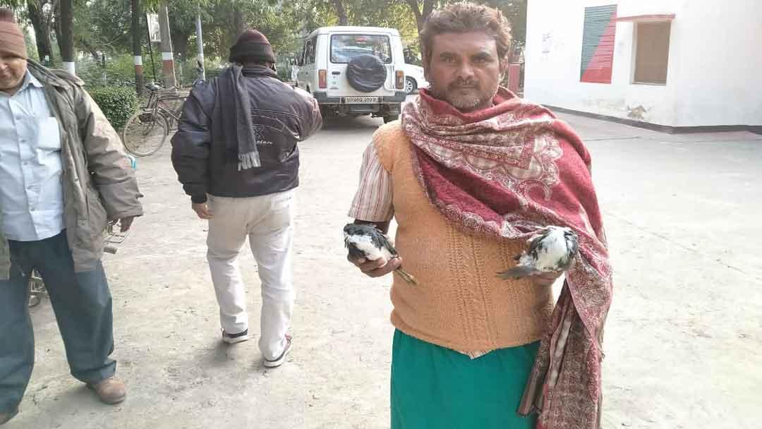 प्रवासी पक्षी के शिकार पर दस हजार रुपये जुर्माना, हिरन घायल
