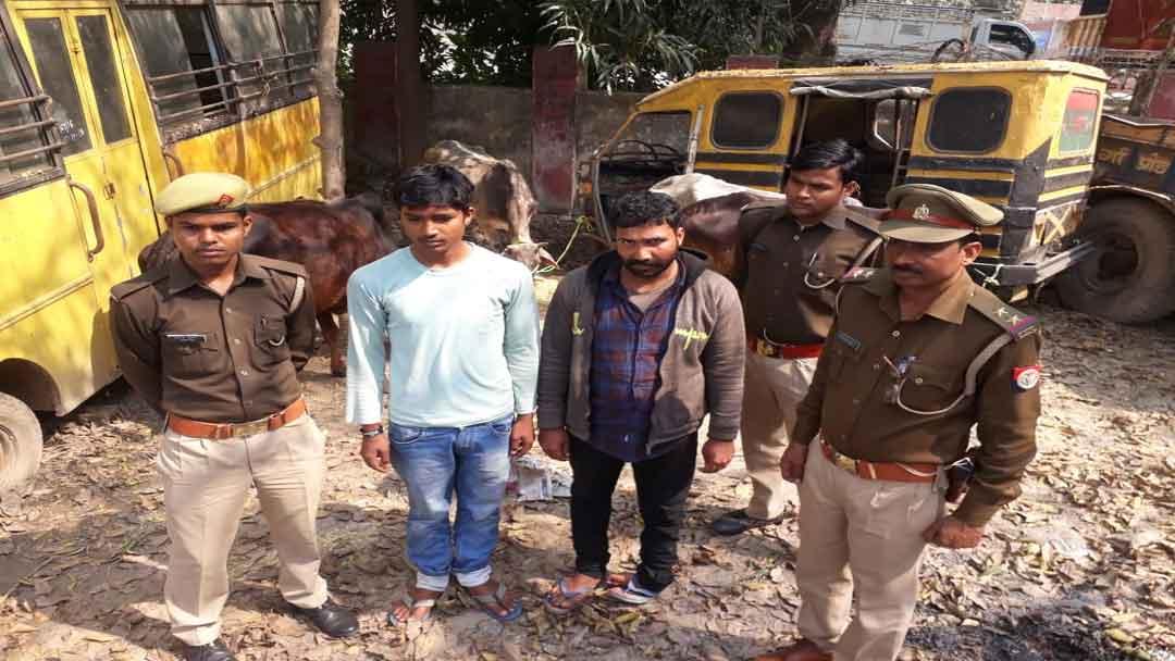तीन गोवंशों को बुचड़खाने ले जा रहे दो युवकों को किया गिरफ्तार