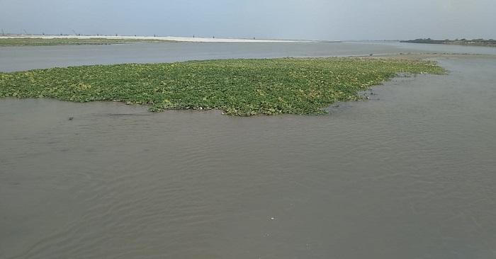 सरयू के जलस्तर में बढ़ोतरी से किसानों की फसल डूबी