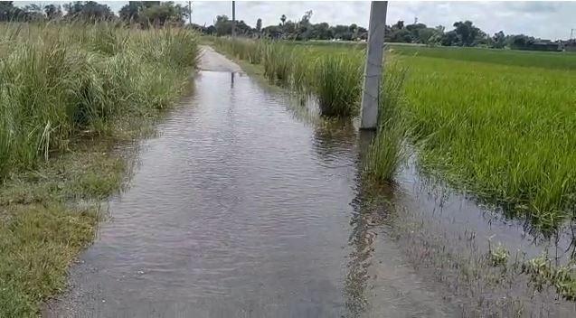 घाघरा नदी का जलस्तर बढ़ने से तटवर्ती इलाकों में खतरा बढ़ा
