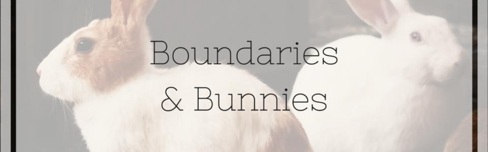 Boundaries& Bunnies