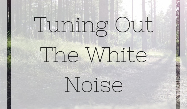 Tuning Out the White Noise