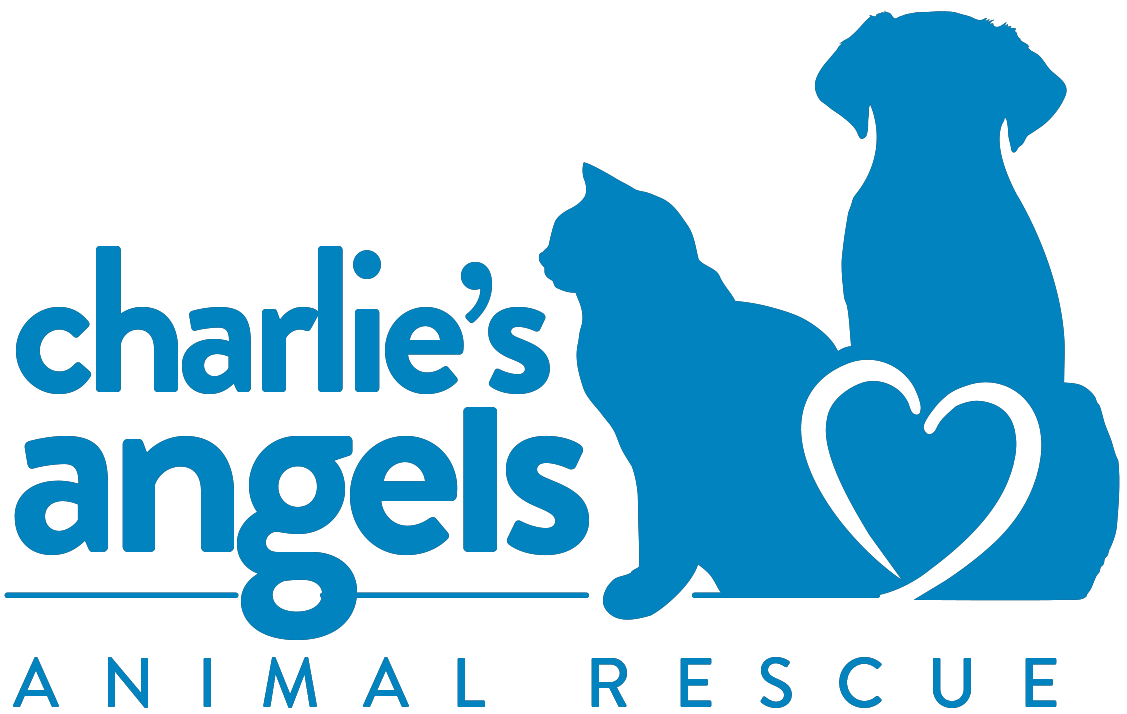 Charlie's Angels Animal Rescue