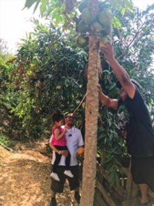 Our Trip to Oaxaca City Mexico - Picking fruit
