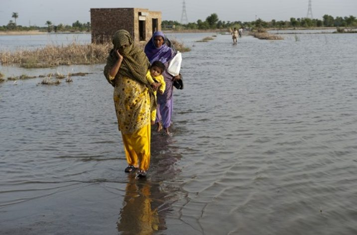 Efficient and empowered local govt system critical to tackle climate change