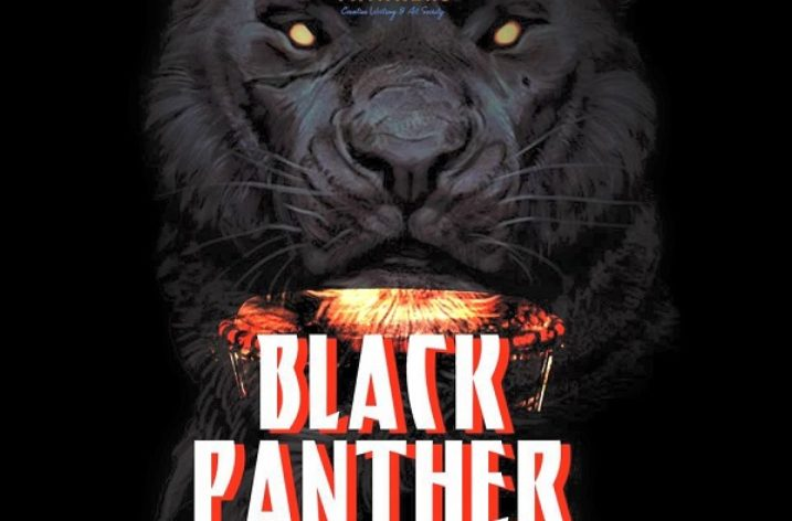 Rejuvenation: A Commentary on The Village Thinkers' Black Panther