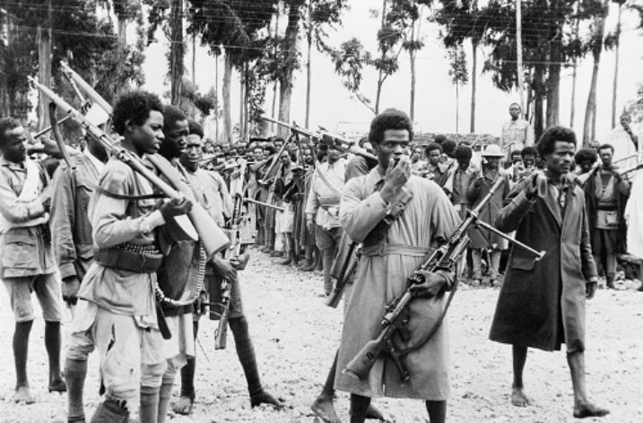 Patriots who fought tooth and nail with colonizers and fascists: Bekele Weya
