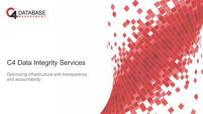 cover image of Data Integrity Services PDF