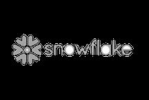 snowflake-logo-gray-2