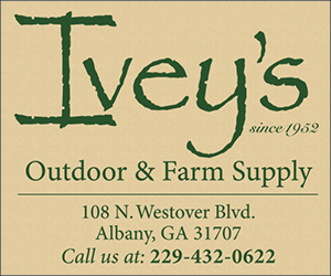 Ivey's advertise with Dixie Trace