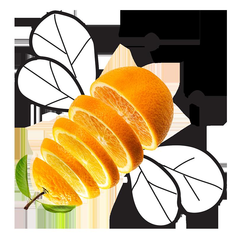 Orange Slice Bee