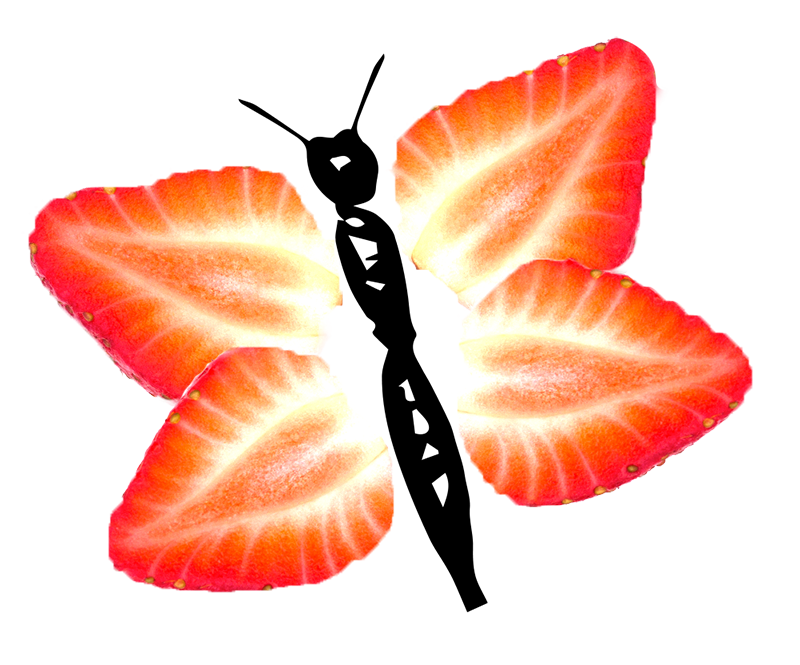 Strawberry_Butterfly