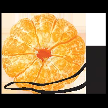 TangerineSnail