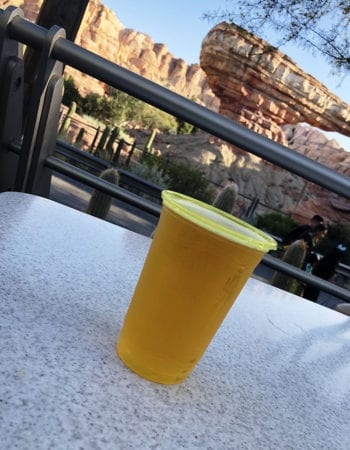 Sipping a Victory Brewing Company's Prima Pils while listening to the cars zip by at Radiator Springs.