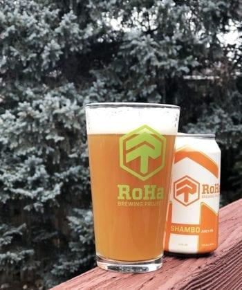 Tastings - Shambo Juicy IPA - RoHa Brewing Project