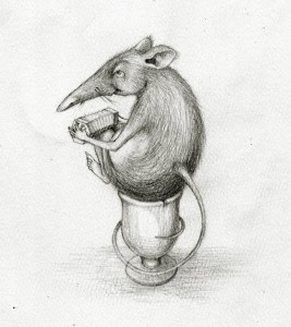 the concertina eggcup song