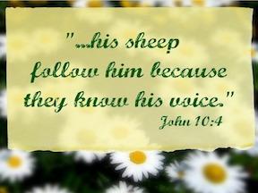 Do You Hear His Voice?